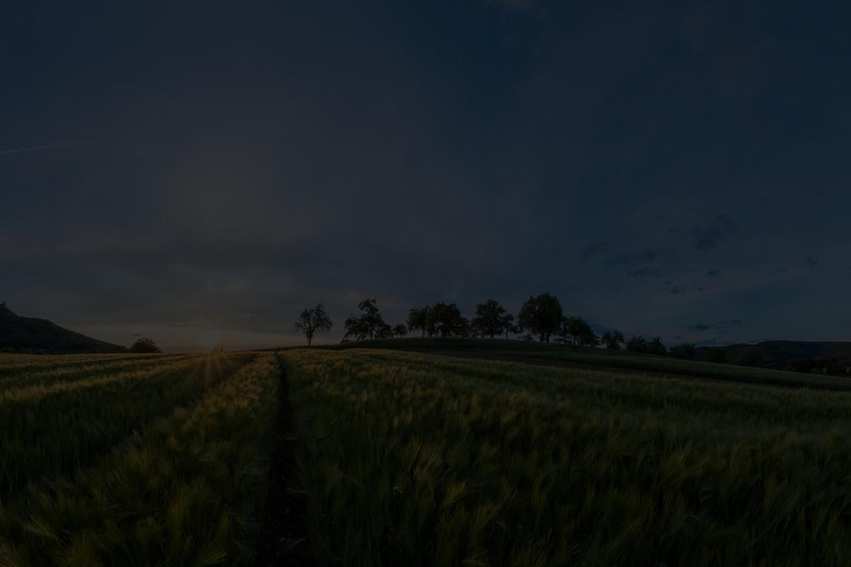 landwirtschaft innovativ derossi